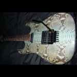 Performance Guitar, Blue Boa Constrictor Snakeskin - Warren Demartini (Ratt)