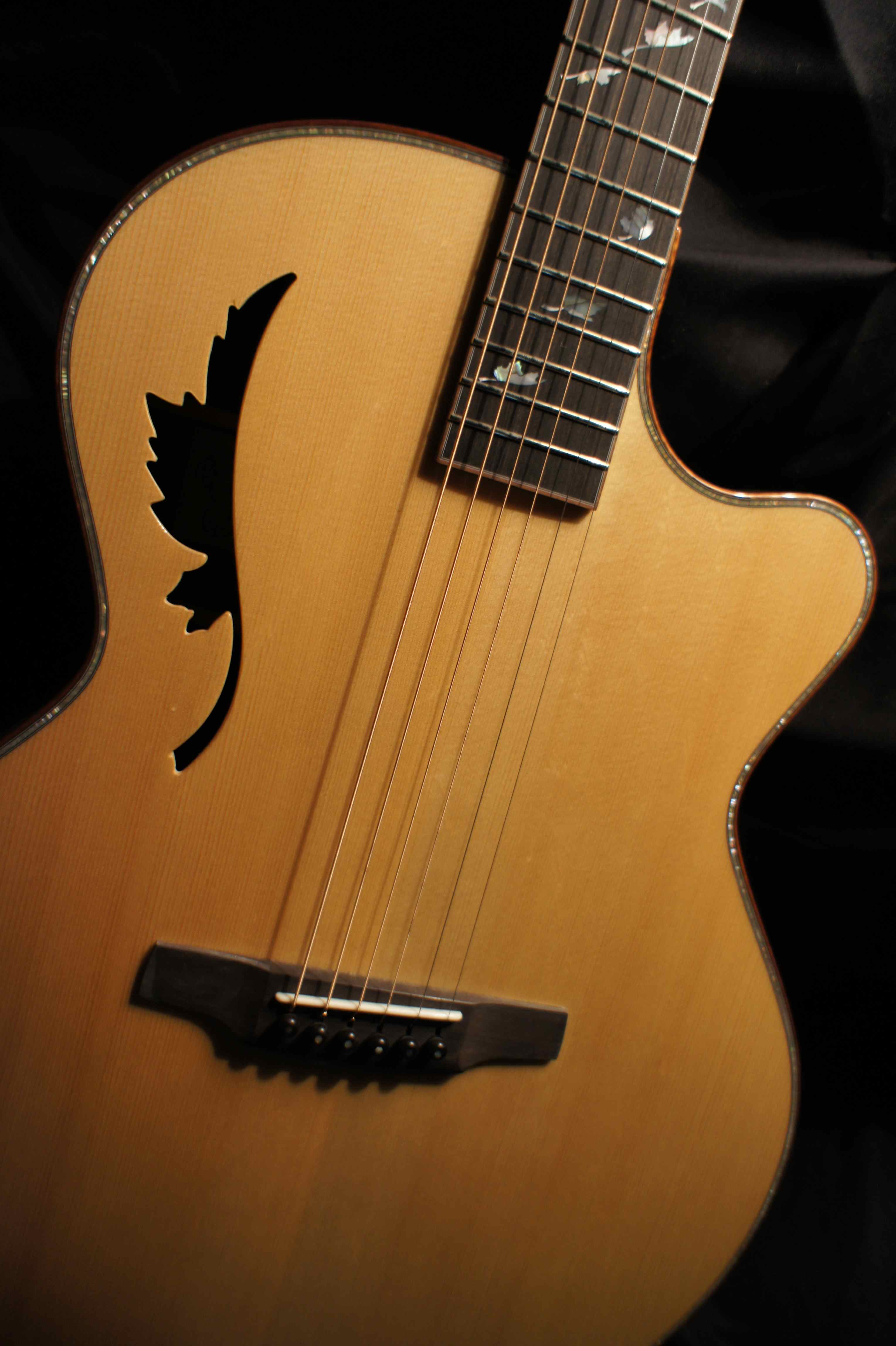 Instead Of A Sound Hole And Pick Guard How About The Canadian